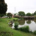 蓮田の西城沼公園に行ってきた